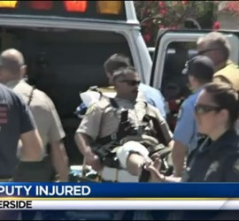 The deputy was rushed to the hospital after his failed attempt to execute an innocent dog.