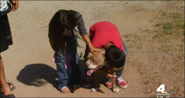 Children relieved their friendly dog wasn't killed.
