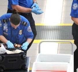 TSA-search