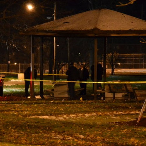 Citizen Warns that 12-yr-old Child's Toy Gun on Playground is FAKE, Cops Shoot and Kill Child Anyway