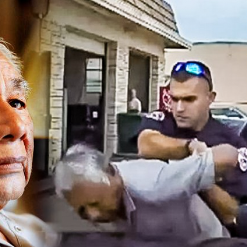 Cop Tases 76-Yr-Old Senior Citizen for Driving With an Expired Tag