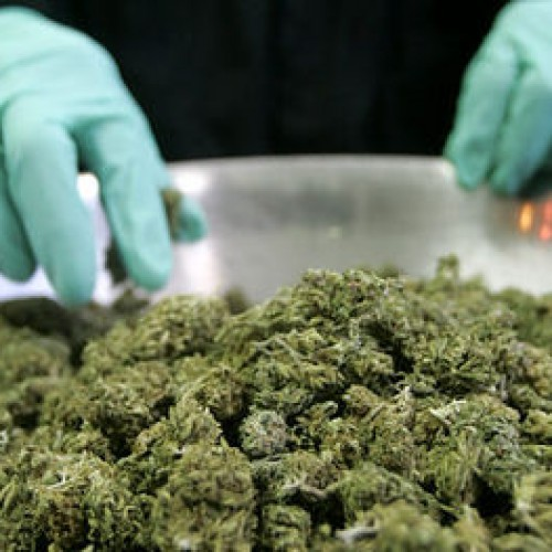 Cop With Five Pounds of Marijuana in His House Won't Face Charges