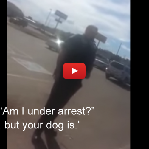 """Your Dog is Under Arrest"" — Weird Cop Tries to Arrest Dog, Owner Dominates Cop"