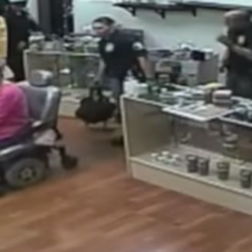 Cops Go on Wild Rampage in Cannabis Raid, Destroy Property and Joke About Kicking Disabled Woman