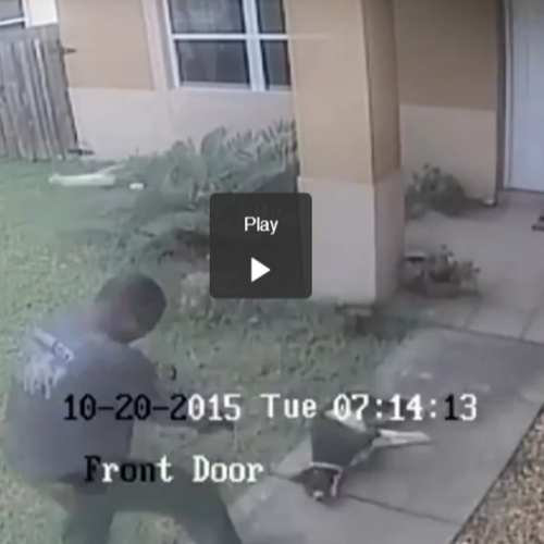 A Cop Just Walked Up to this Family's House and Shot Their Dog THREE TIMES in the Head