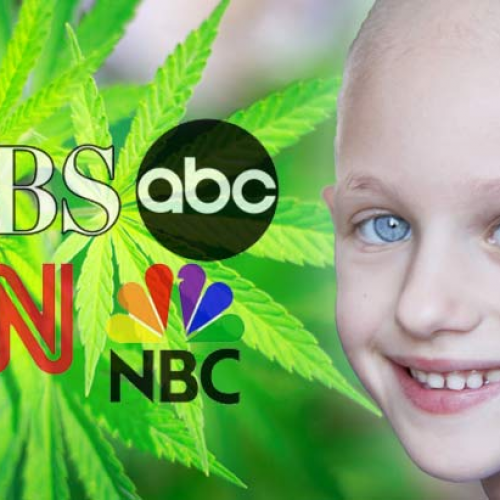 Media Finally Admits It: Cannabis Can Cure Cancer, It's High Time We Stop Arresting People for It