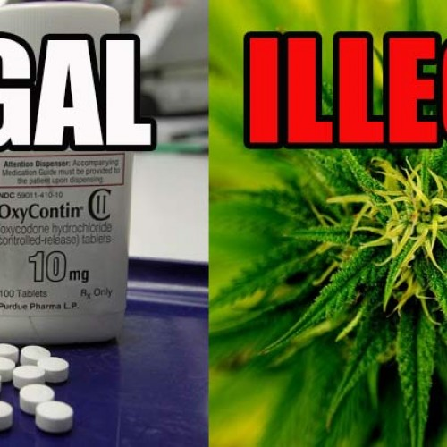 Same Government that Locks People in Jail for Cannabis, Just Approved OxyContin for Young Children
