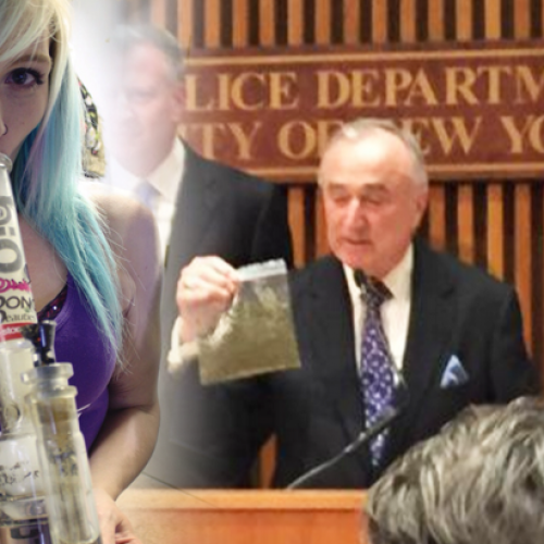 NYPD Cops Dramatically Reduces Arrest Rate for Pot, and the City Didn't Fall into Chaos