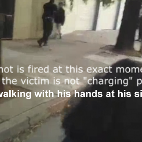 Cops Just Got Caught on Video Murdering a Citizen in the Street