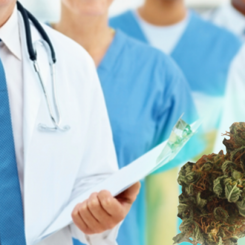 National Group of Prestigious Doctors is Pushing to Legalize Recreational Cannabis