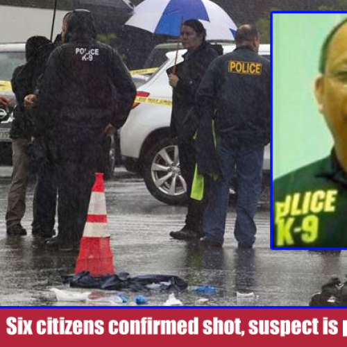 Cop Goes on Mass Shooting Spree, Multiple Citizens Dead and Others Wounded: Report