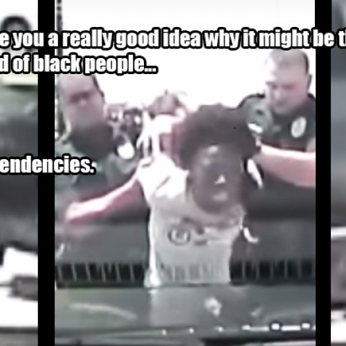"Cop Slams School Teacher Into Concrete, Then Says Blacks Have ""Violent Tendencies"""