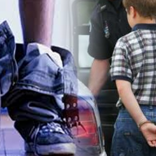 Court Grants Police Officer 'Immunity' for Strip-Searching Child at School