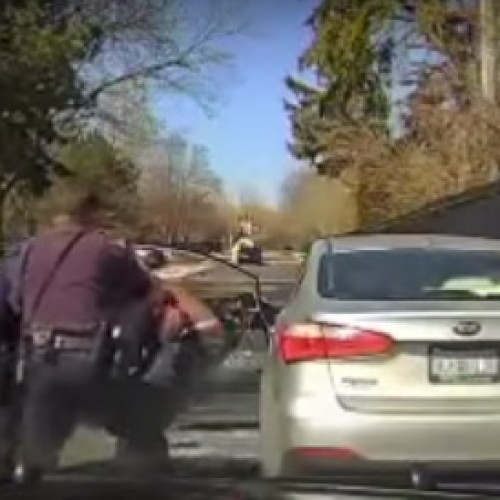 Video: Detroit Cop Rips Out Window then Attacks Man in Violent Arrest