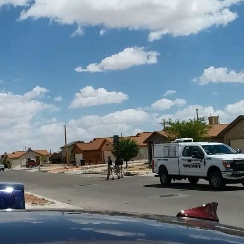 El Paso Country Sheriff's Deputy Shoots Non-Aggressive Dog