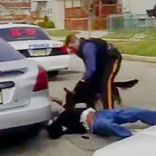 [WATCH] New Video Surfaces Showing New Jersey Cops Siccing Dog on Non-Resisting Man, Who Ended Up Dying