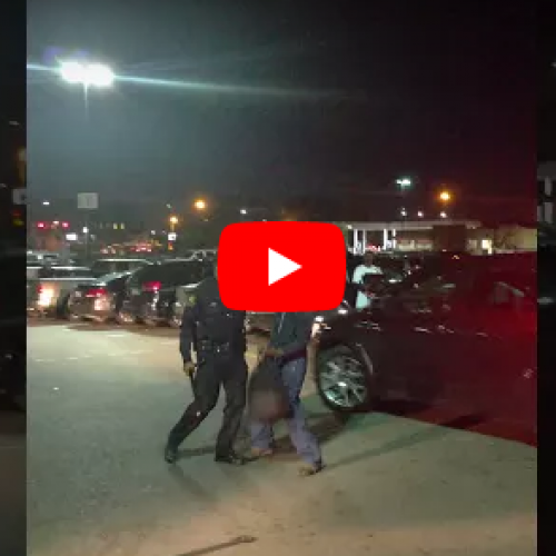 [WATCH] Video Shows Detroit Police Officer Hitting Man's Face With His Club
