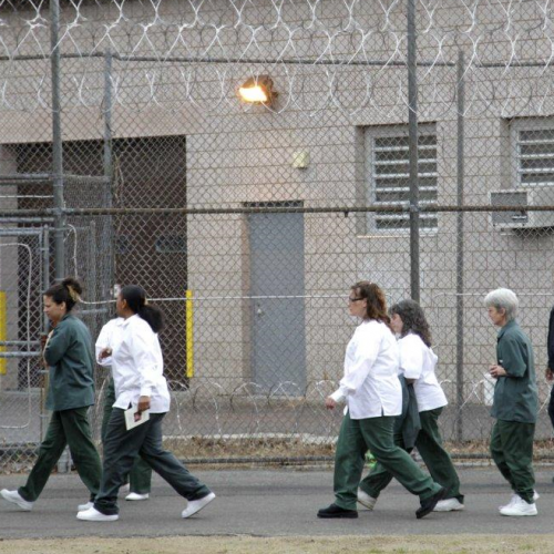 Westchester County Prison Used Inmate as Bait to Catch Perv Then Punished Her: Lawsuit