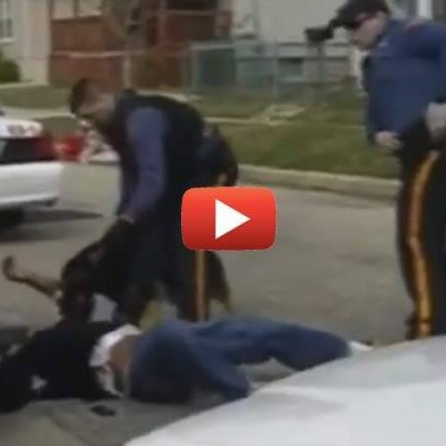 WATCH: Graphic Video Backs Up Witness Accounts, Police Allow K-9 to Tear Apart Unconscious Man