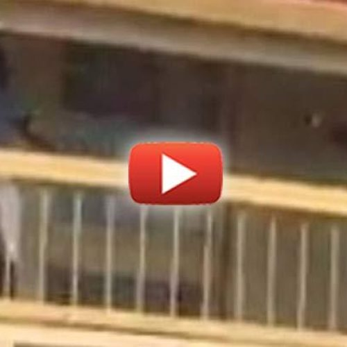 WATCH: Alarming Video Shows Cop Taser Man for Voicing his Concern Over a Woman's Rough Arrest