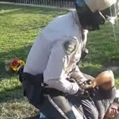 WATCH: Cop Brutally Arrests Woman For Selling Flowers