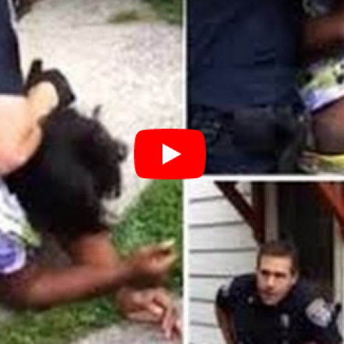 WATCH: Rochester Police Officer Beats Pregnant Woman