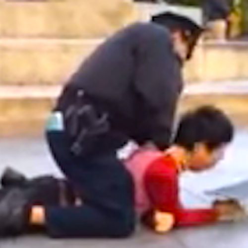 WATCH: NYC Cop Puts Skateboarder in Banned Chokehold and Blasts Him With Pepper Spray