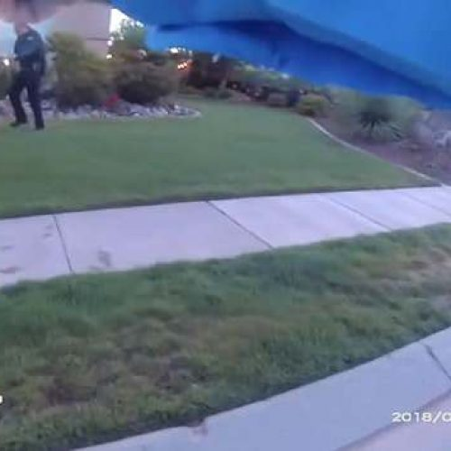 WATCH: Bodycam Shows Utah Cop Use Taser on Attacking Dog