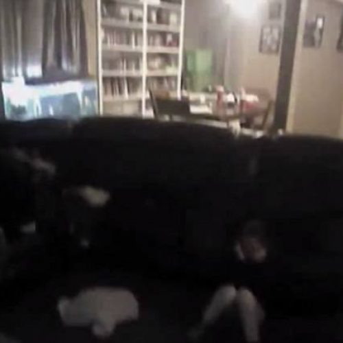 WATCH: Shocking Police Bodycam Footage Shows Kansas Cop, Open Fires Hits Nine Year Old in Face