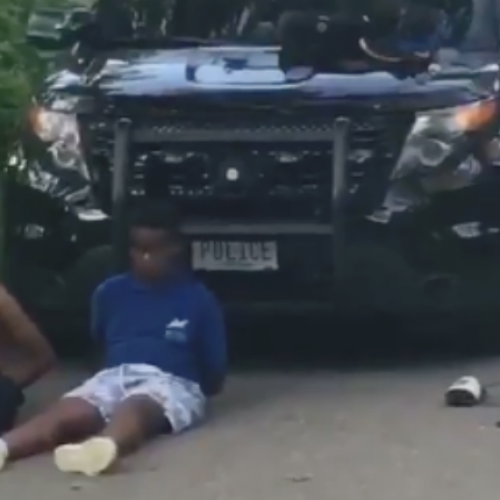 WATCH: Minneapolis Police Draw Guns and Detain Four Boys For Walking Through The Park